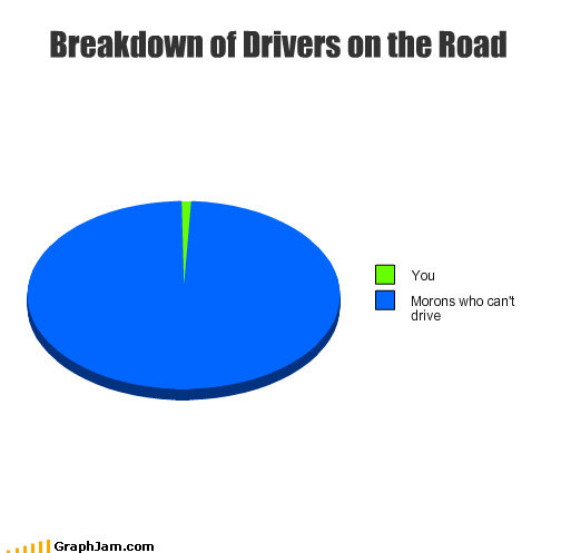 driving,Pie Chart,road rage,slow down,speed up