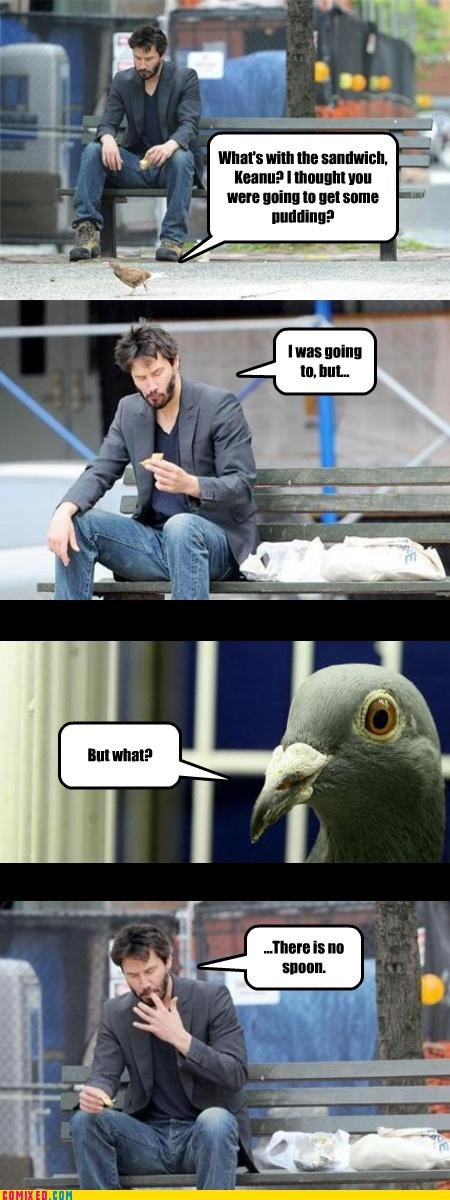 animals,celebutard,food,keanu reeves,pigeons,pun,there is no spoon