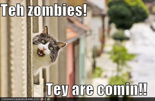 Teh zombies!  Tey are comin!!
