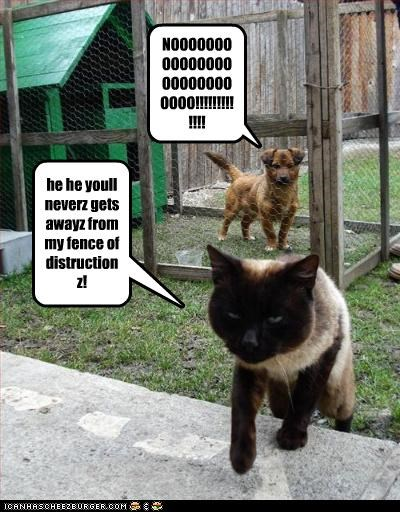 he he youll neverz gets awayz from my fence of distructionz!