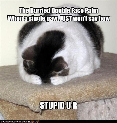 The Burried Double Face Palm When a single paw JUST won't say how STUPID U R