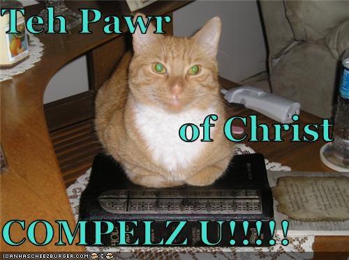 Cheezburger Image 3792663296