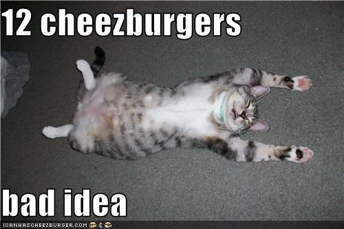 Cheezburger Image 3792707072