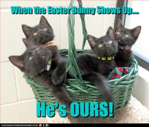 When the Easter Bunny Shows Up.... He's OURS!