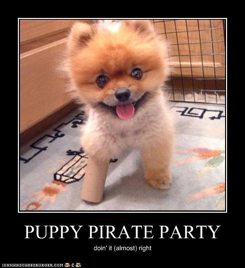 PUPPY PIRATE PARTY doin' it (almost) right