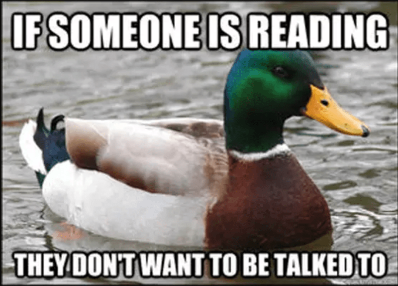funny advice from a duck
