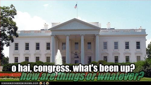 o hai, congress. what's been up? how are things or whatever?
