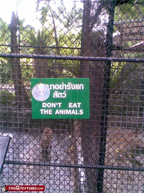 animals eat sign Unknown warning zoo