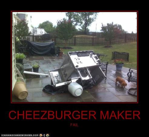 Cheezburger Image 3797496576