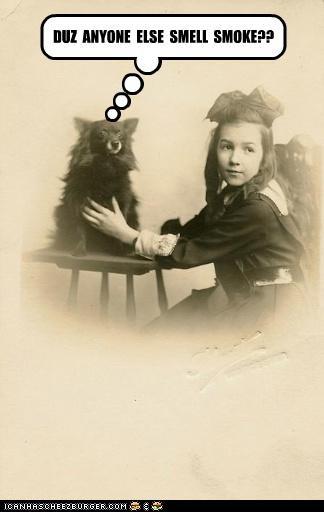 animals,funny,kids,Photo,photograph,portrait