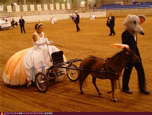 ball,carriage,horse,proper,wtf