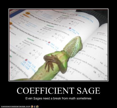 COEFFICIENT SAGE Even Sages need a break from math sometimes