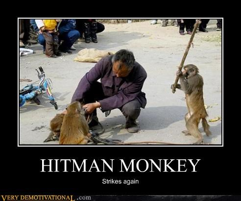 animals,anthropomorphization,hitman monkey,murder,Pure Awesome,stick,Terrifying