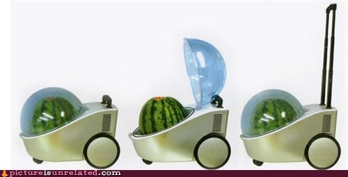 carrier,product,ridiculous,watermelon,wtf