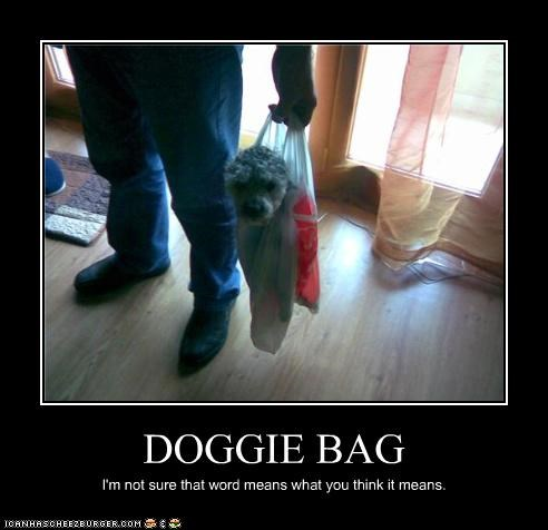 cute doggie bag groceries helpless the princess bride whatbreed - 3801127424