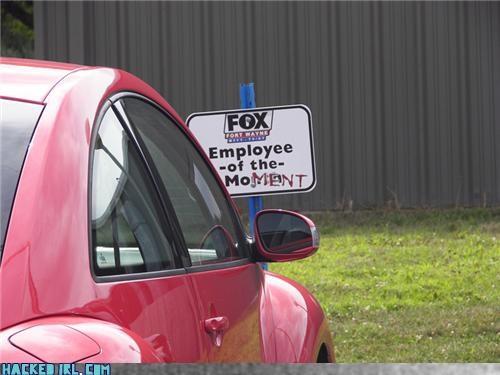 no parking pop culture - 3803382784