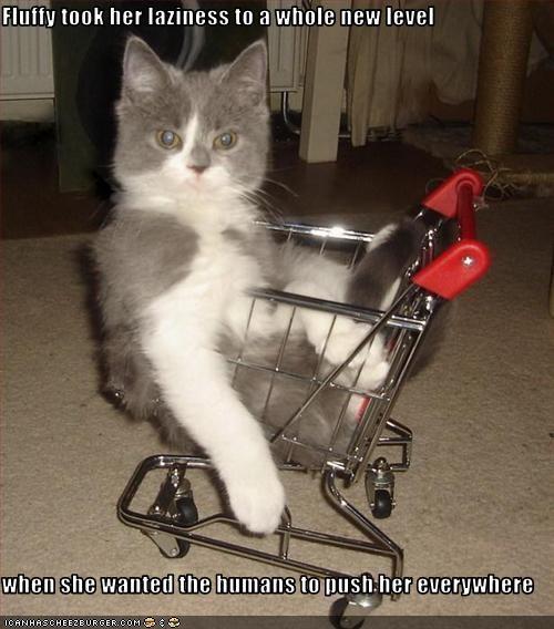 caption lazy shopping cart - 3803525120