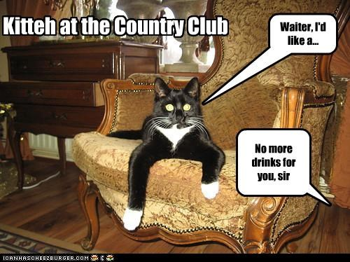 Kitteh at the Country Club Waiter, I'd like a... No more drinks for you, sir