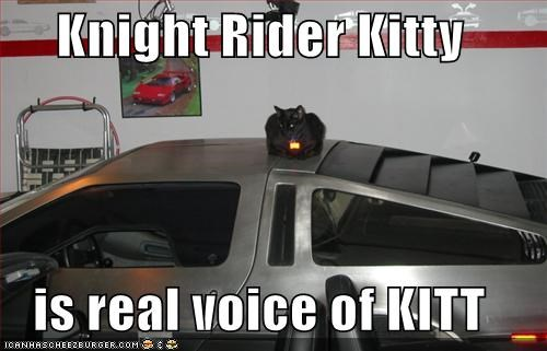 Knight Rider Kitty is real voice of KITT - Cheezburger