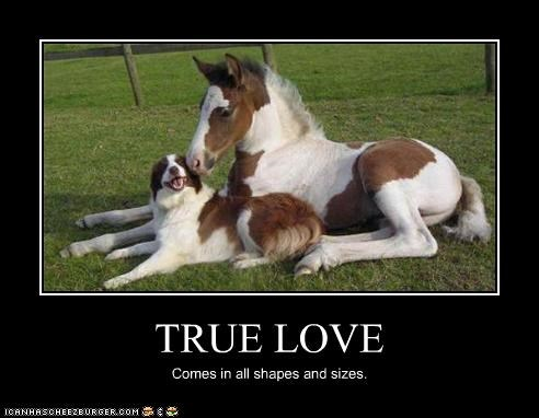 TRUE LOVE Comes in all shapes and sizes.