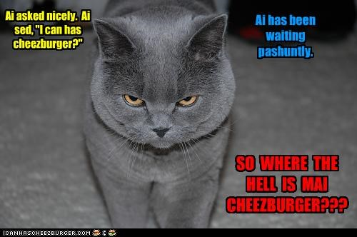 """Ai asked nicely. Ai sed, """"I can has cheezburger?"""" Ai has been waiting pashuntly. SO WHERE THE HELL IS MAI CHEEZBURGER???"""