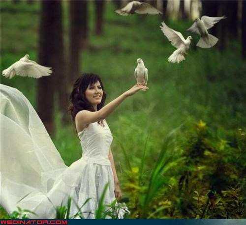 70s album cover,aww,bride sets birds free,bride with doves,Crazy Brides,doves,fashion is my passion,funny bride picture,Funny Wedding Photo,romantic gesture,surprise,Wedding Themes