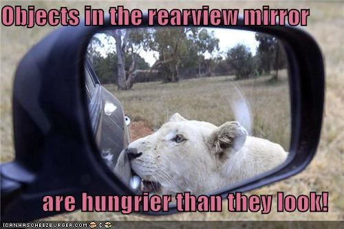 Objects in the rearview mirror  are hungrier than they look!