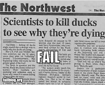 animals,bad idea,Death,ducks,failboat,research,science