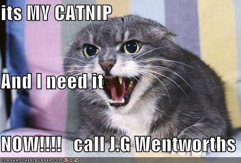 its MY CATNIP  And I need it  NOW!!!!   call J.G Wentworths