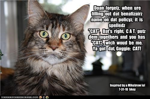 "Doan forgetz, when ure filling out dat benafizairz name on dat policyz, it is spelledz ""CAT"". Dat's right, C A T, putz dem togethers and you has ""CAT"", wich woud be me. Ya got dat, Goggie: CAT! Inspired by a Mikebrow lol 7-31-10 bkey"