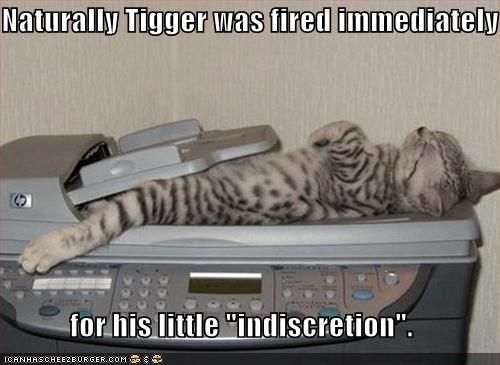 bad cat caption copies kitten work - 3815154432
