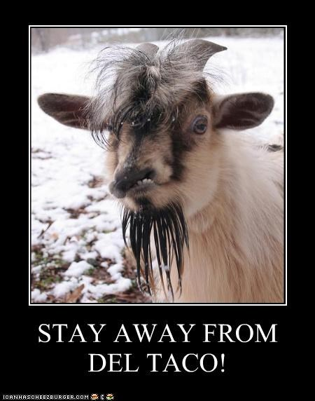 Del Taco Destery goat hipster stay away - 3819078656
