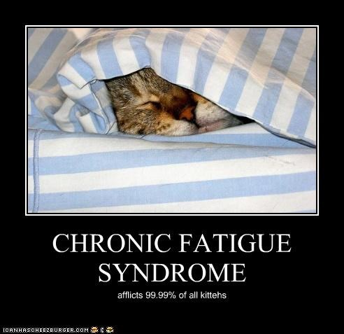 CHRONIC FATIGUE SYNDROME afflicts 99.99% of all kittehs