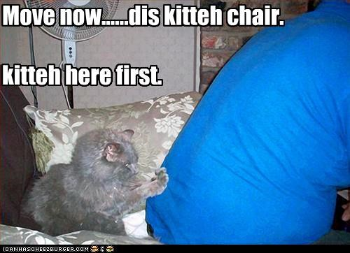 Move now......dis kitteh chair. kitteh here first.