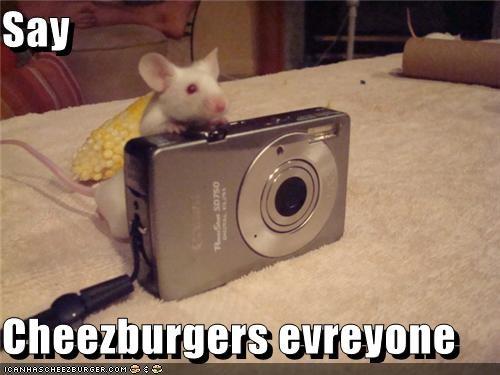 Cheezburger Image 3820798976