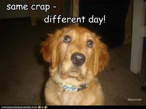 same crap - different day! OHgrammyIO