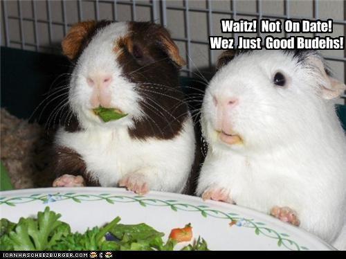Waitz! Not On Date! Wez Just Good Budehs!