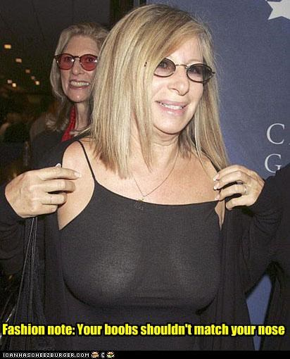 celebrity-pictures-barbara-streisand-nose lolz - 3821638912