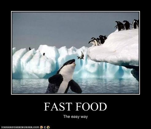 FAST FOOD The easy way