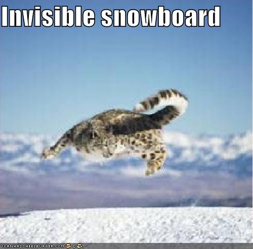 Invisible Snowboard Cheezburger Funny Memes Funny Pictures
