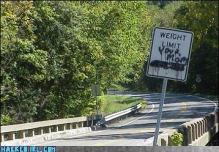 fat weight limit your mom - 3825037056