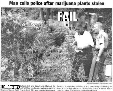 drugs failboat police pot Probably bad News theft why-did-you-call-911 - 3826049536