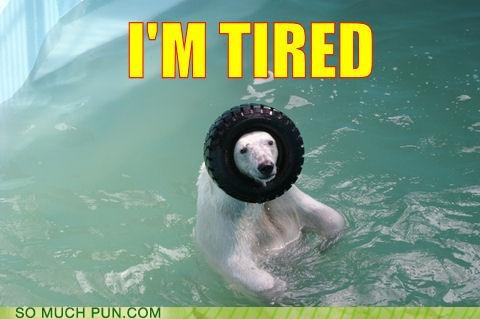animals,blazing saddles,polar bear,puns,tired
