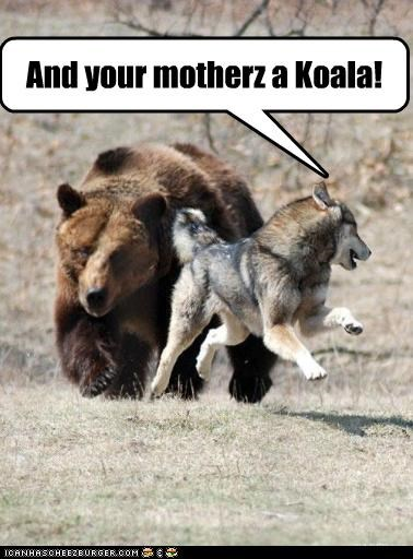 chase grizzly bear Hall of Fame husky insults koala ridiculous scary