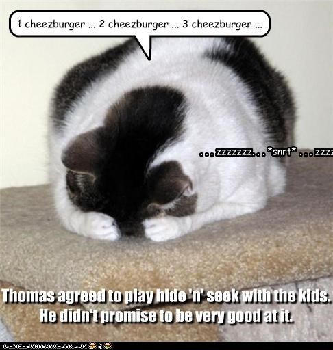 Cheezburger Image 3830084608