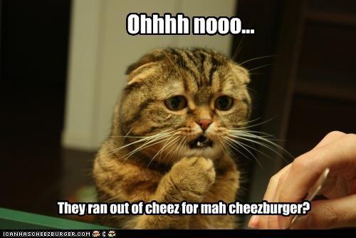 Cheezburger Image 3830104064
