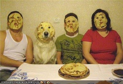 caption contest,golden retriever,pancakes,silly hoomins