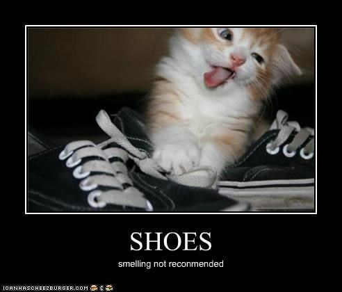 SHOES smelling not reconmended