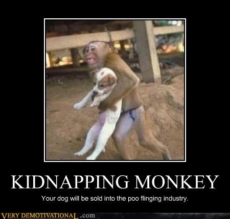 KIDNAPPING MONKEY Your dog will be sold into the poo flinging industry.