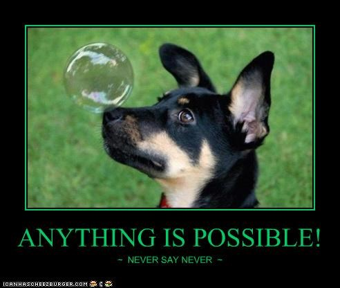 ANYTHING IS POSSIBLE! ~ NEVER SAY NEVER ~